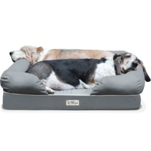 PetFusion-Dog-Lounge-and-Bed-1170x1170